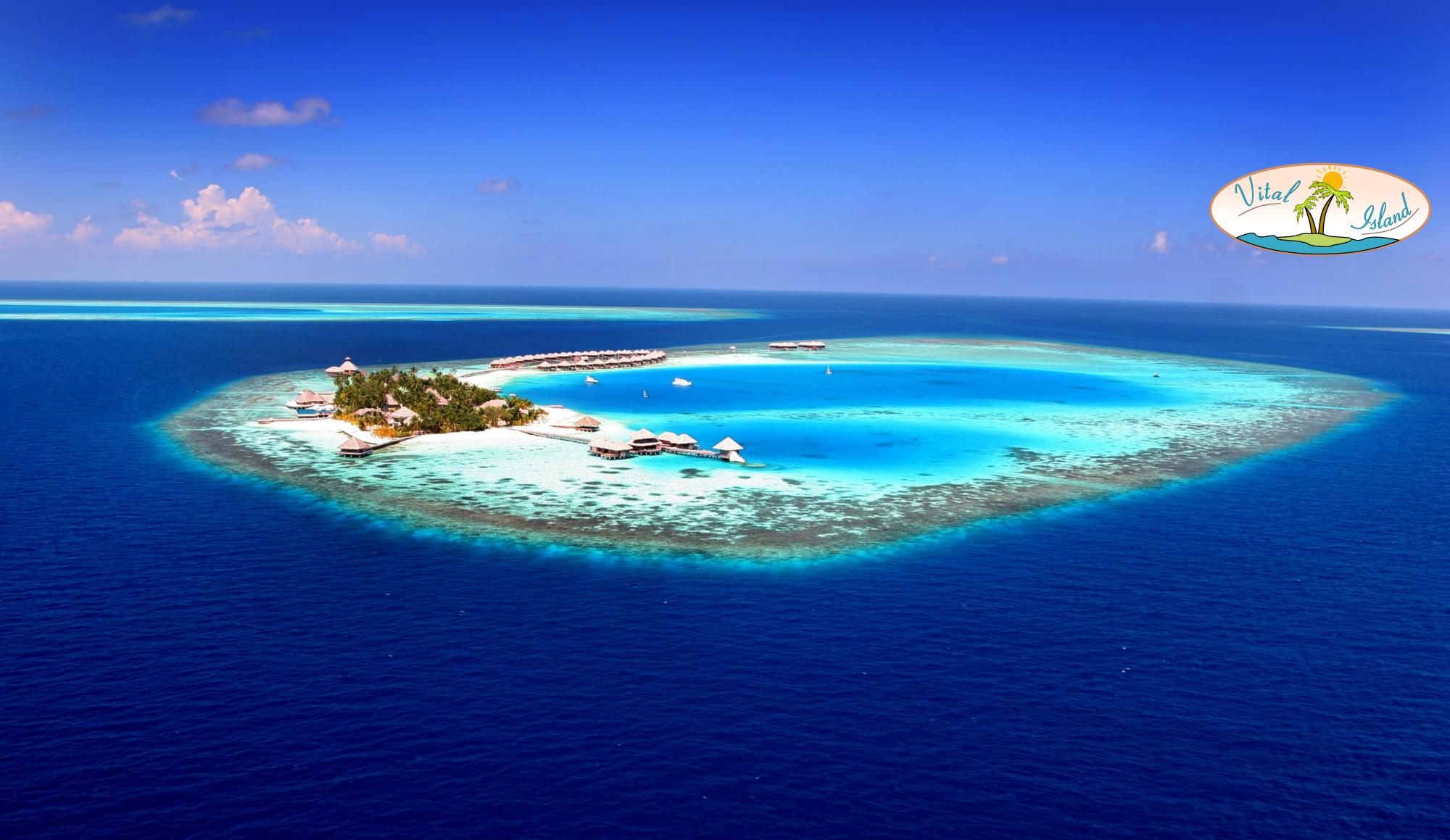 Vital-Island - Insel der Vitalität