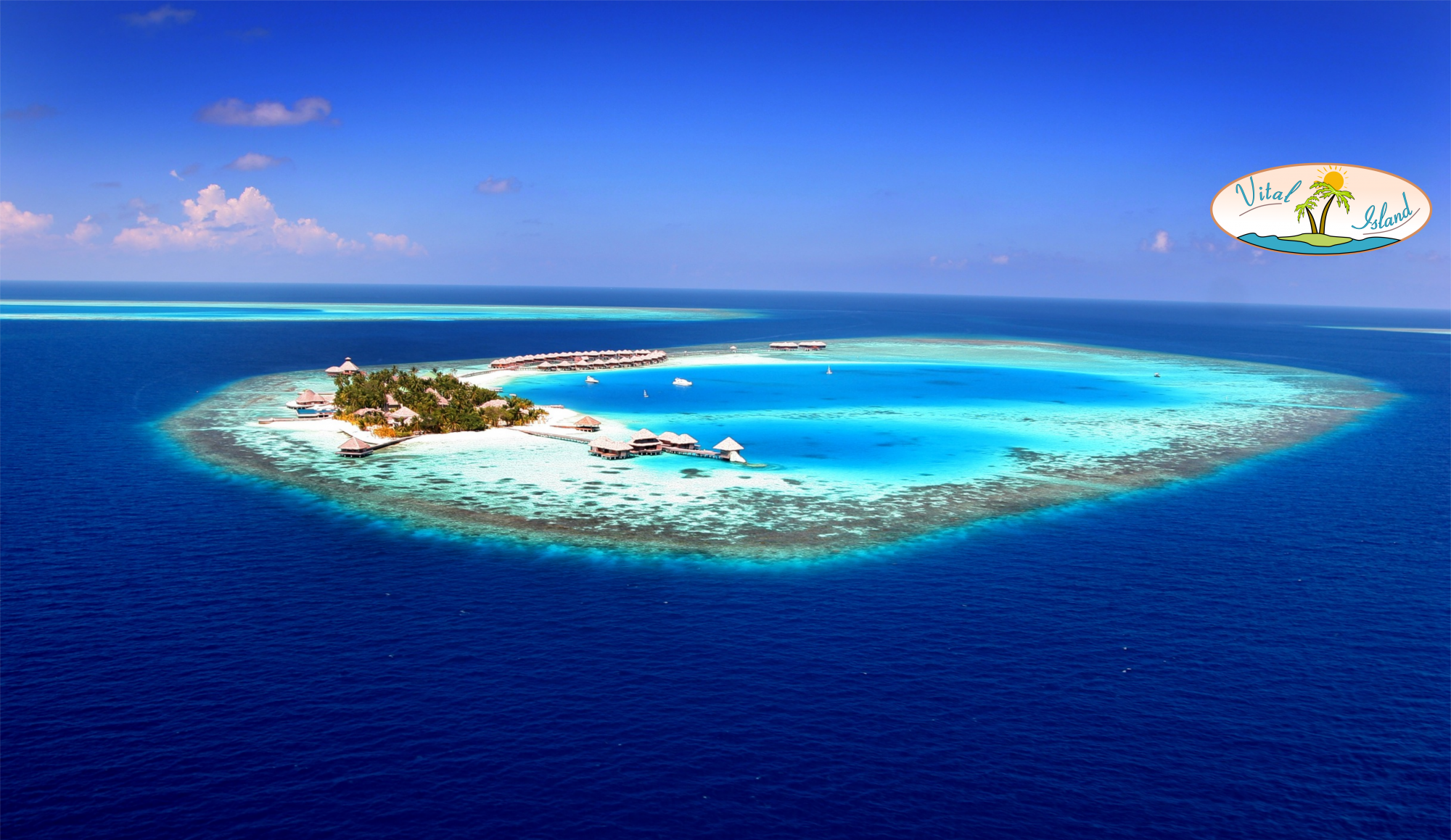 Vital-Island - the island of vitality